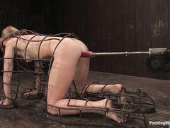 Связанная телочка получает оргазм от секс машины