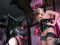 Раб в костюме собаки лижет жопу госпожи перед дрочкой члена